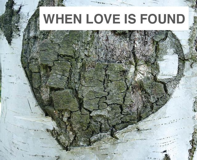 When Love is Found | When Love is Found| MusicSpoke