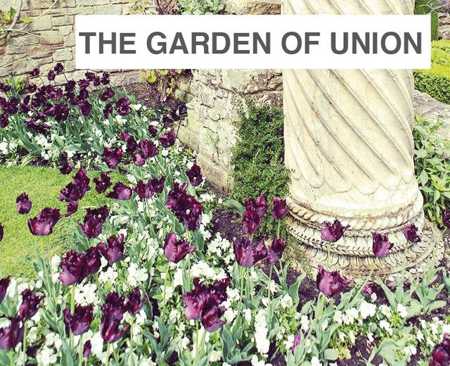 The Garden of Union/The King Who Stole my Heart | The Garden of Union/The King Who Stole my Heart| MusicSpoke