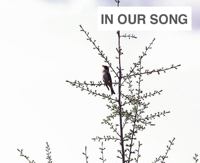 In Our Song | In Our Song| MusicSpoke