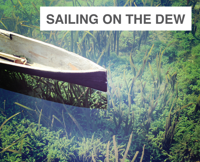 Sailing on the Dew | Sailing on the Dew| MusicSpoke