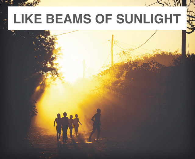 like beams of sunlight | like beams of sunlight| MusicSpoke