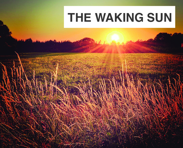 The Waking Sun | The Waking Sun| MusicSpoke