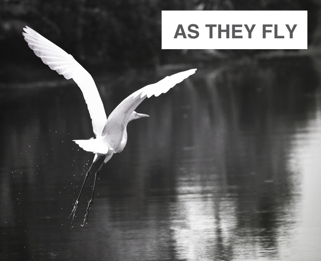As They Fly | As They Fly| MusicSpoke