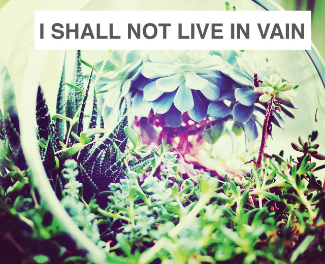 I Shall Not Live in Vain | I Shall Not Live in Vain| MusicSpoke