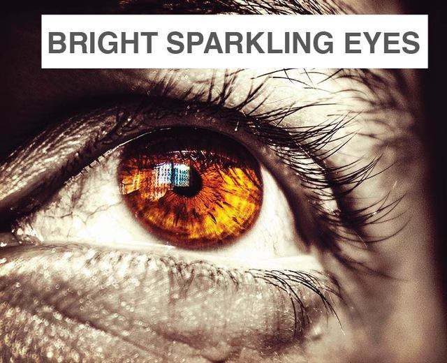 From Your Bright Sparkling Eyes, a Death Bed Adieu | From Your Bright Sparkling Eyes, a Death Bed Adieu| MusicSpoke