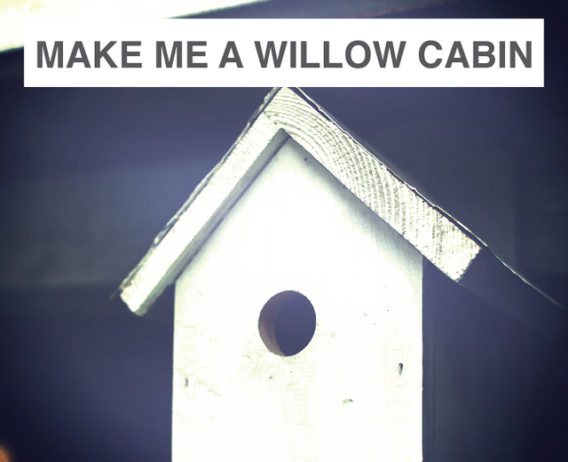 Make Me a Willow Cabin | Make Me a Willow Cabin| MusicSpoke