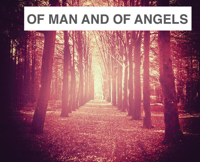 Of Man and of Angels | Of Man and of Angels| MusicSpoke