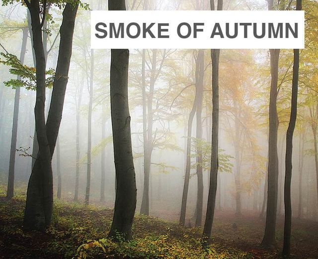 Three Pieces on the Smoke of Autumn | Three Pieces on the Smoke of Autumn| MusicSpoke