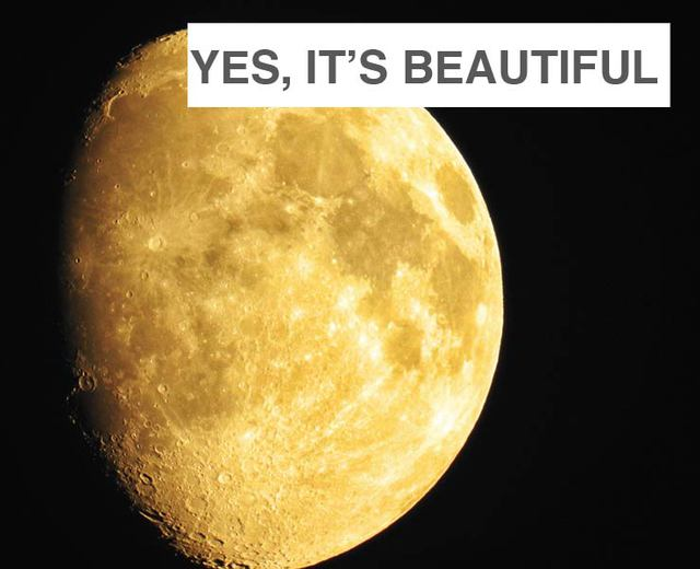 Yes, It's Beautiful | Yes, It's Beautiful| MusicSpoke