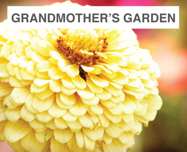 Grandmother's Garden | Grandmother's Garden| MusicSpoke